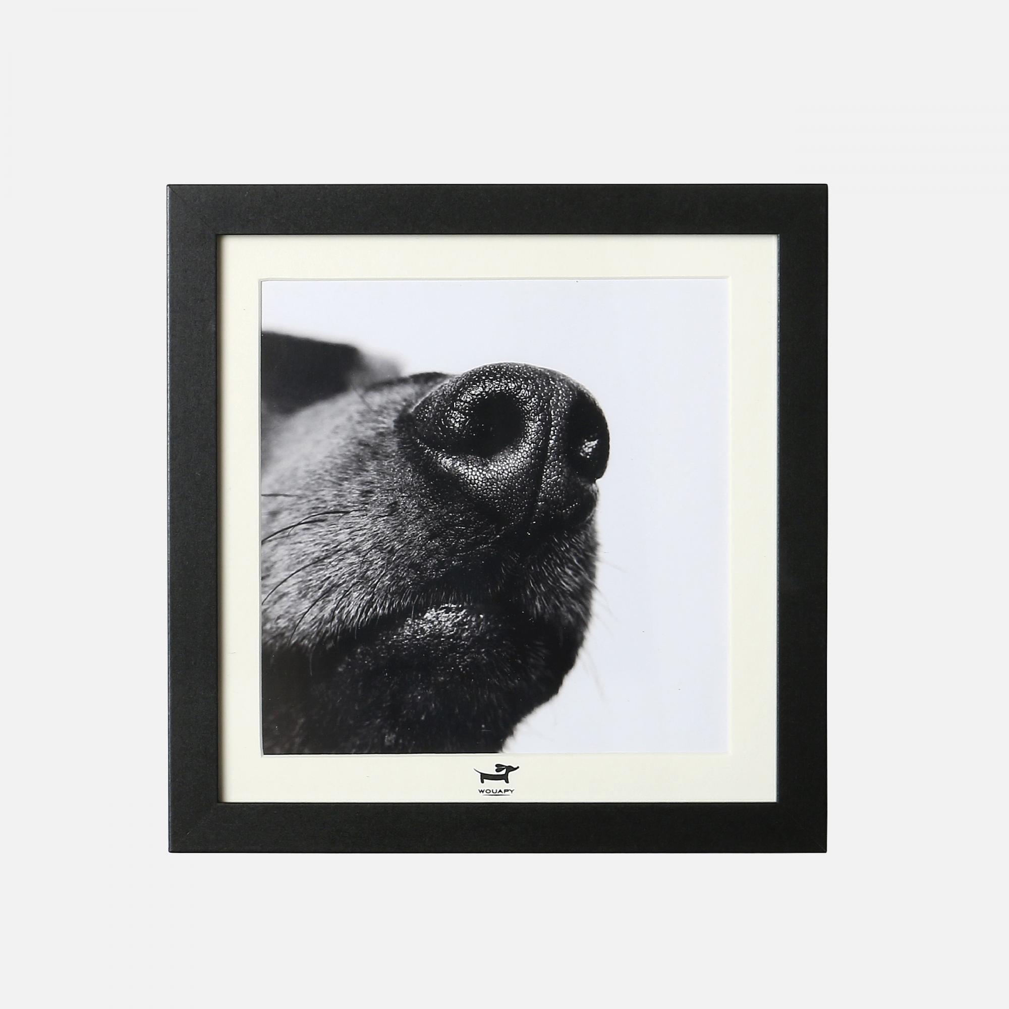 Cadre chien noir 1 de wouapy