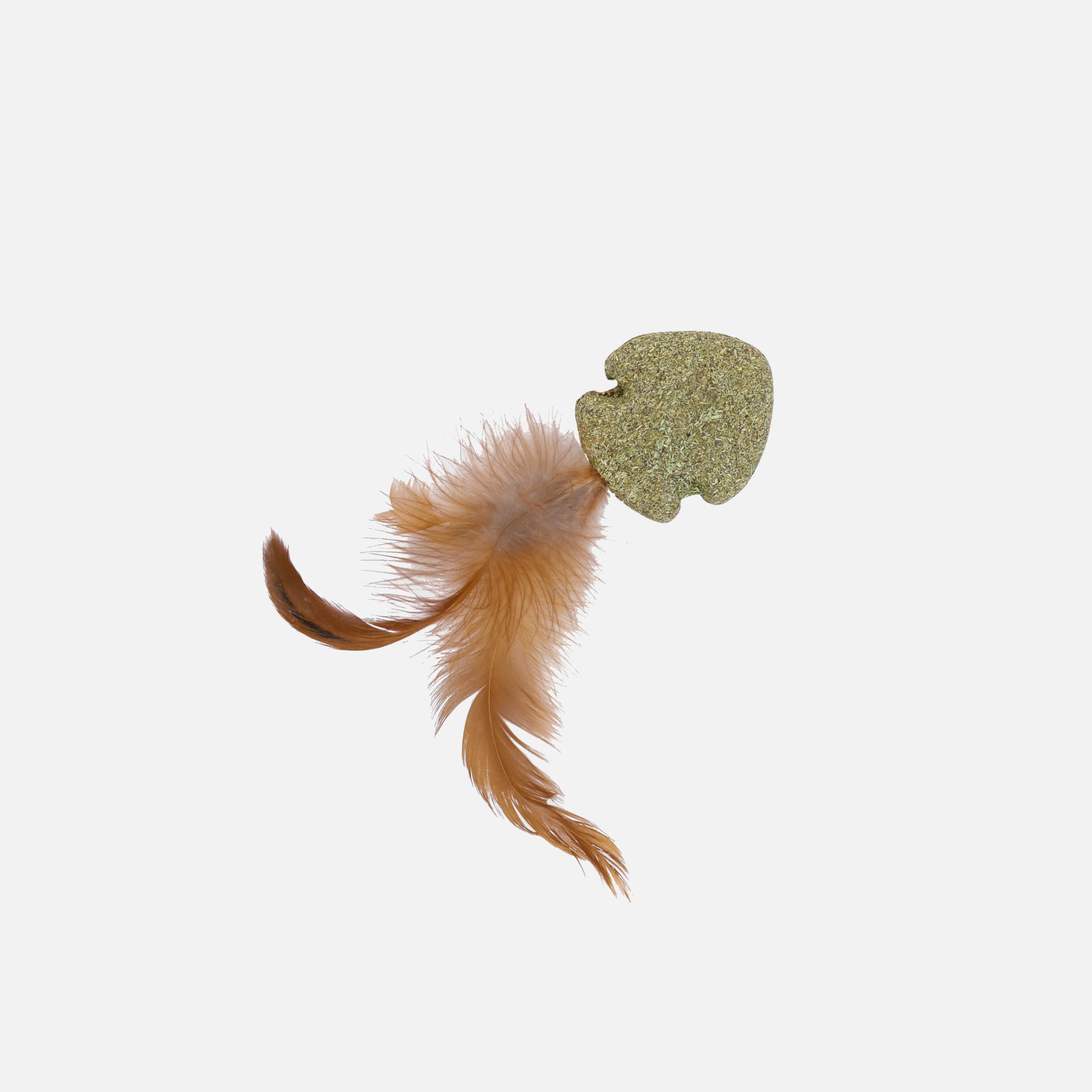 poisson_nageur_a_plumes matatabi naturel et herbe a chats